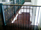 Highlights - Interior brass and wrought iron railing